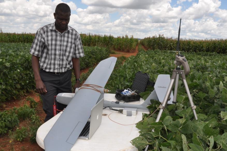 Un avión no tripulado ayuda a mejorar el cultivo de maíz