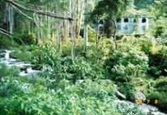 ruinas-panama