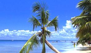 Dominicana autoriza más vuelos para paliar la caída de viajeros