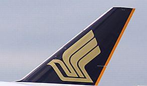 Se puede navegar por el cielo en Singapore Airlines con tecnología de Deutsche Telekom