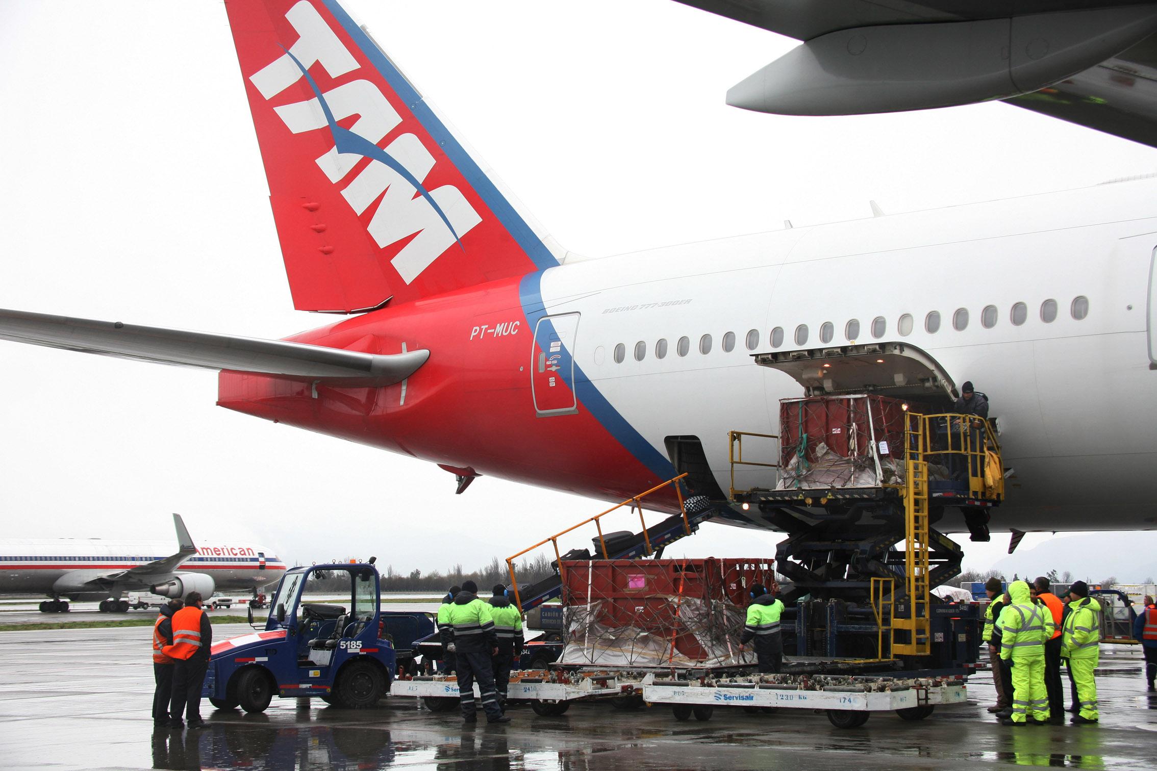 Aerolínea TAM transporta a los dos primeros rinocerontes que llegan a Chile
