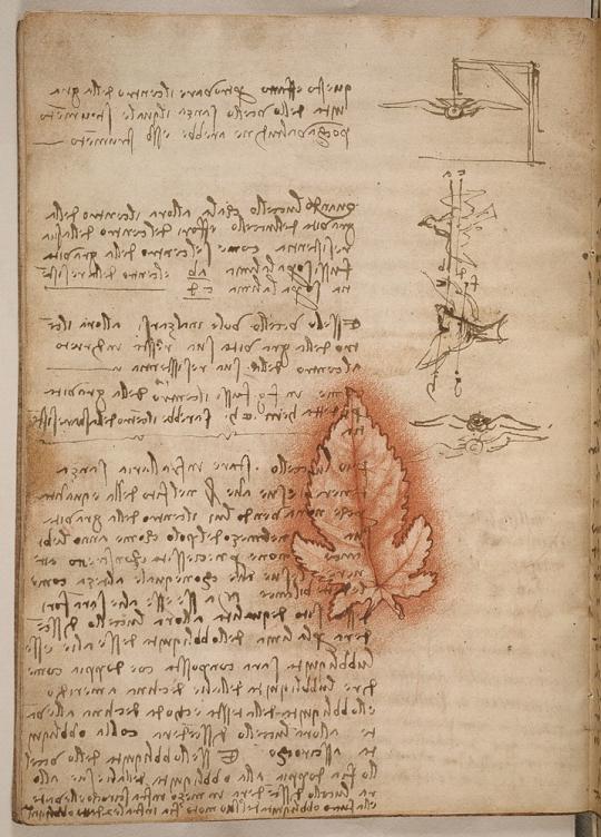 Genialidad en el Código del Vuelo de Pájaros de Leonardo Da Vinci