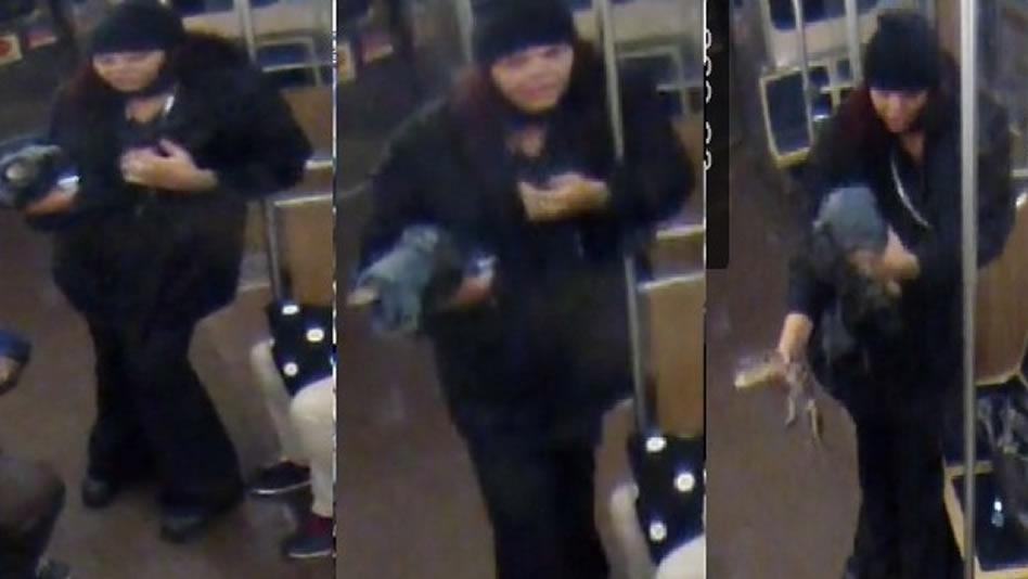 Una mujer abandona a un pequeño cocodrilo en el aeropuerto de Chicago