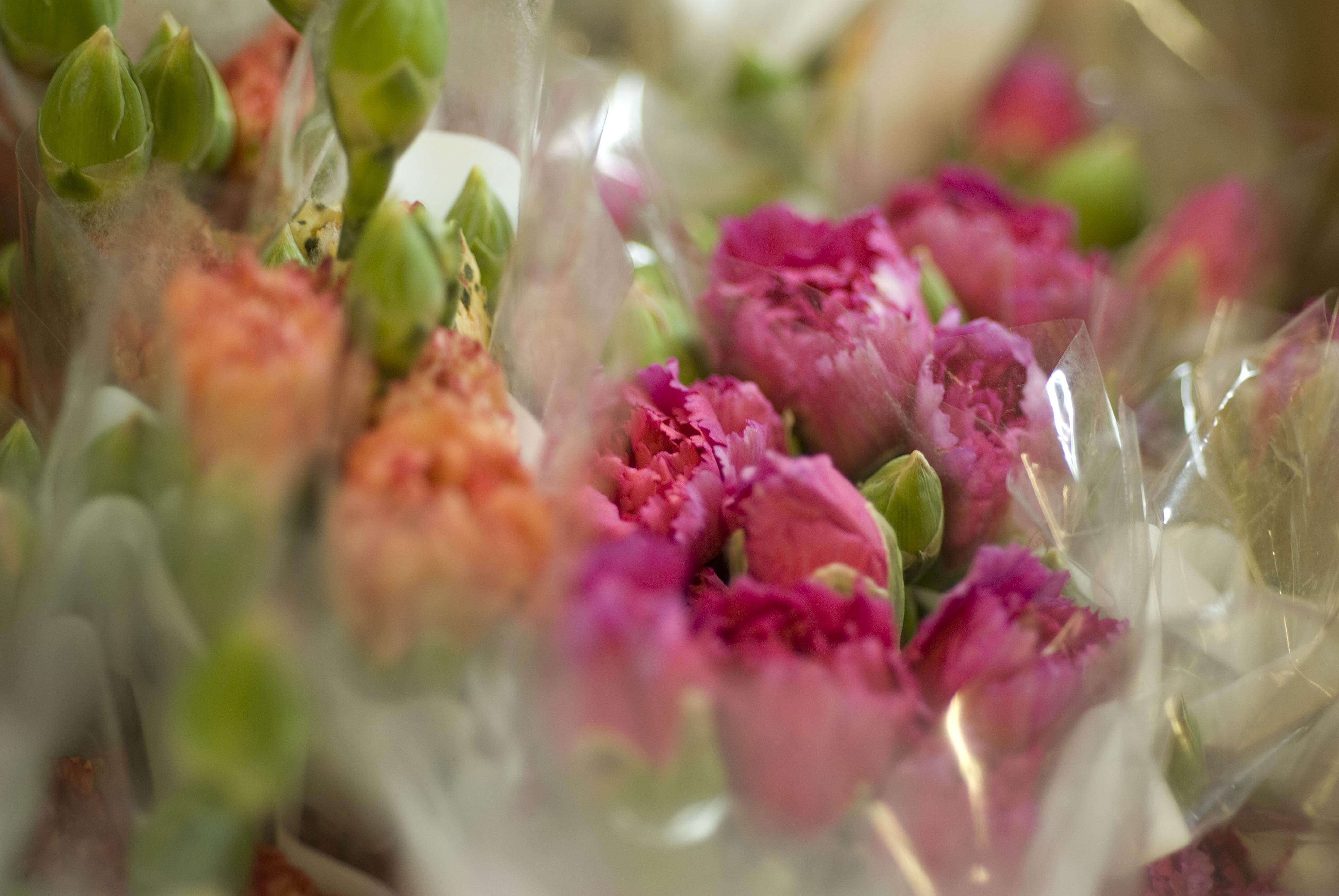 Toneladas de flores llegan al aeropuerto de Miami para el día de San Valentín