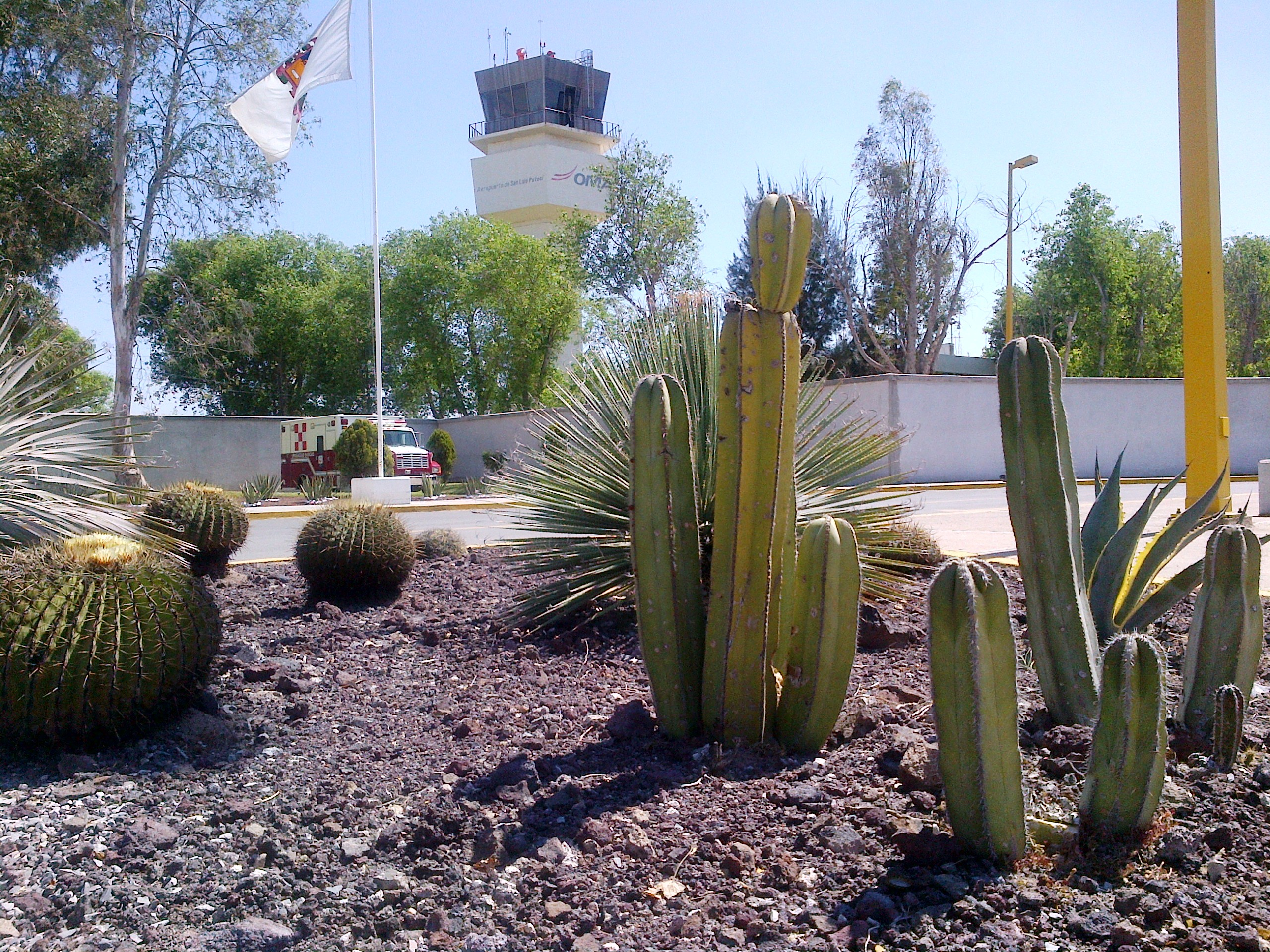México: Director de la Facultad de Economía urge a ampliar el aeropuerto potosino