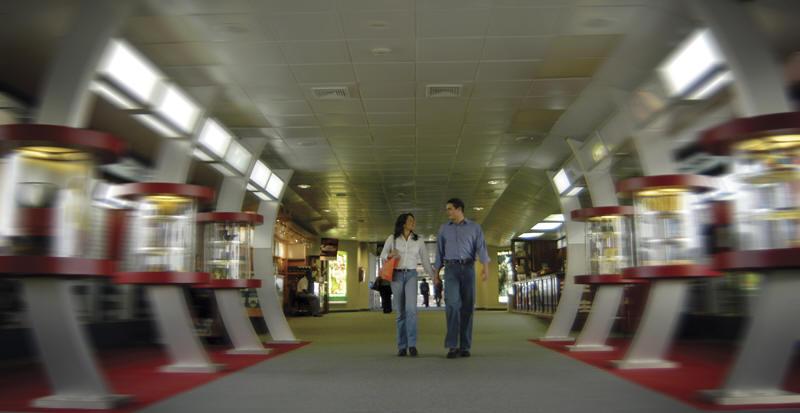 Encuesta Global de Pasajeros IATA: rastreando la actitud y el comportamiento de los pasajeros a través de la experiencia de viaje