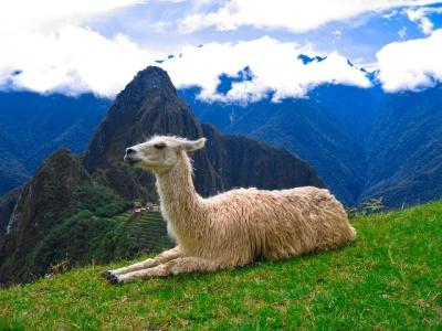 Perú es el tercer país mundialista sudamericano que recibe más turistas