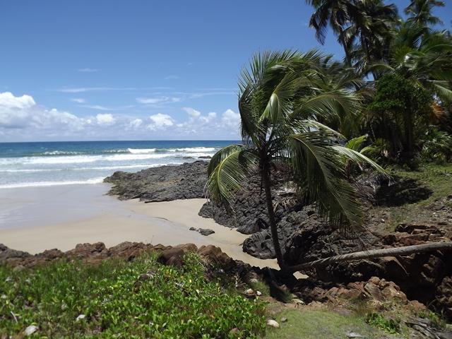 Sector turístico dominicano demuestra estar a punto para casos de emergencias por huracanes