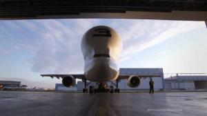 Aernnova fabrica con éxito las piezas del Beluga XL de Airbus