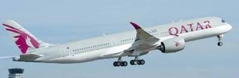Un pasajero denuncia a Qatar Airways por picadura de araña a bordo