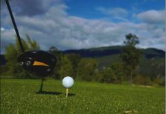 palo-golf1