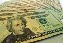 Dolares dinero $