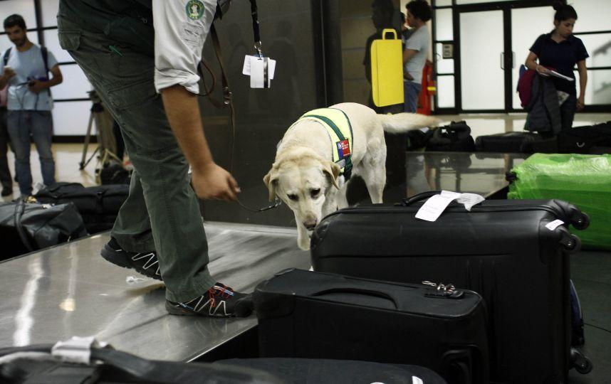 Los aeropuertos de Estados Unidos baten récord en la incautación de armas