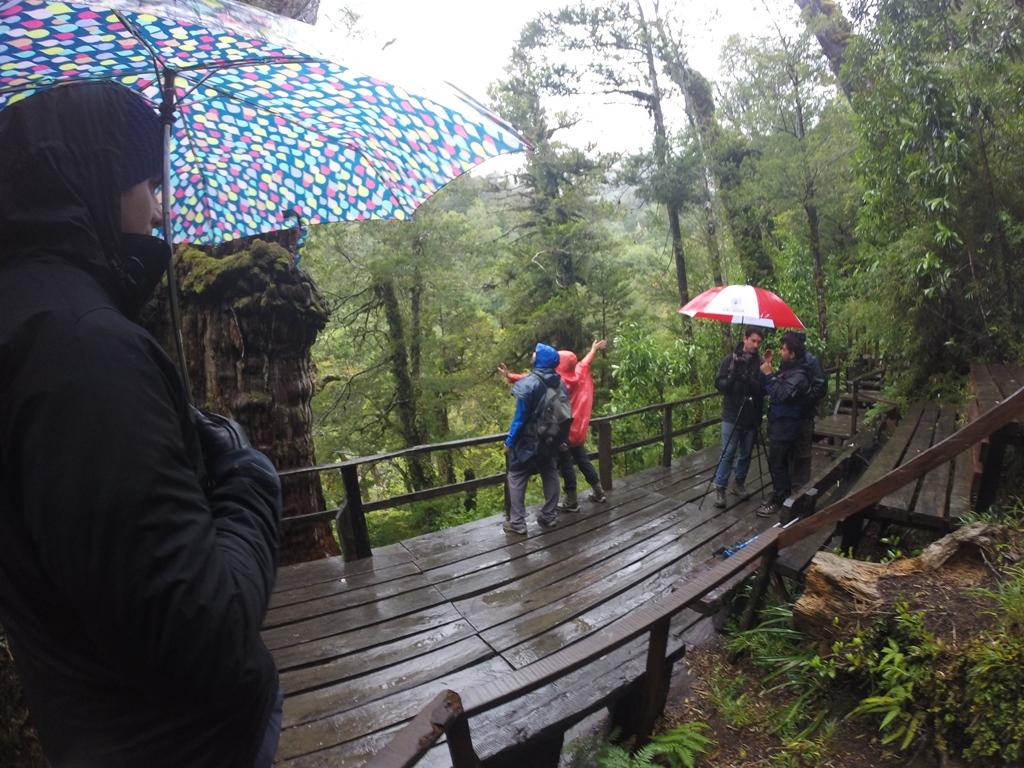 Chile: Aysén se muestra al mundo en feria internacional de turismo