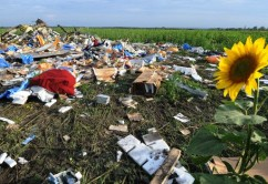 mh17_wreckage_girasoles_624x351_getty