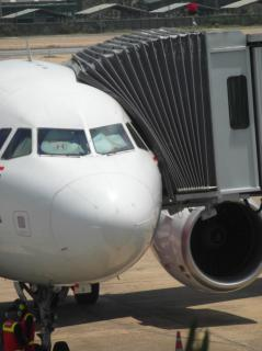 Cancelan nueva cinta de Tom Hanks por accidente aéreo