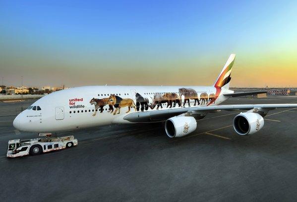 Emirates apoya la lucha contra la caza furtiva