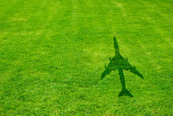 Happy that airlines have adopted resolution on aviation carbon emission: IATA