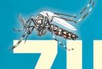 México: La SCT implementó acciones preventivas en contra del Zika, Dengue y Chikungunya