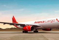 AVIANCA Cargo1 Plus