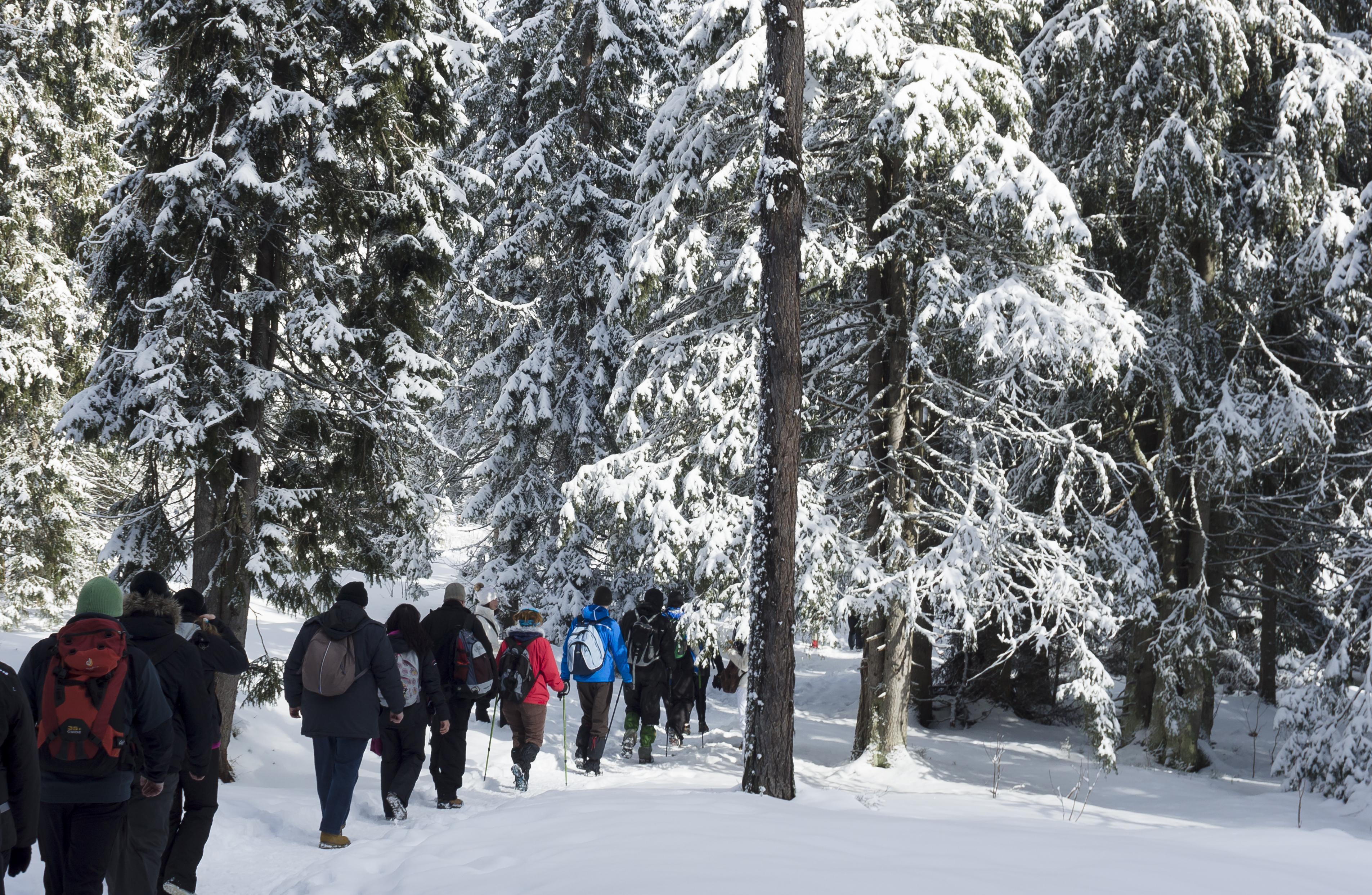 Entre esquí y aventuras en 4×4, lo mejor del invierno en Ushuaia