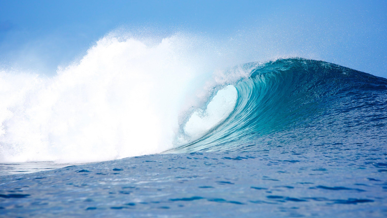 ATRAPAMUNDO ES UNA EMPRESA QUE ORGANIZA TU VIAJE DE SURF