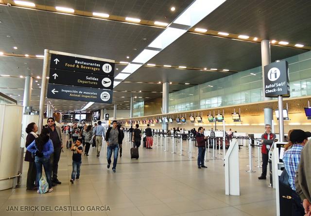 Incautan cargamento de ranas venenosas en aeropuerto de Colombia