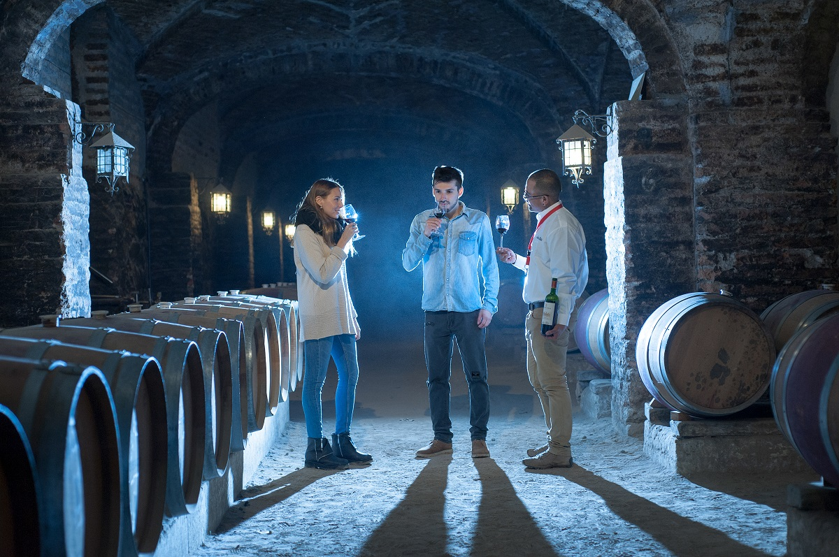 Turismo entre viñedos, una oferta cada vez con mas adeptos en Chile
