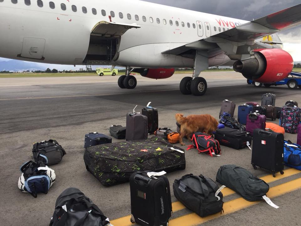 Pasajero enojado realiza falsa amenaza de Bomba en Avión de Viva Air Colombia