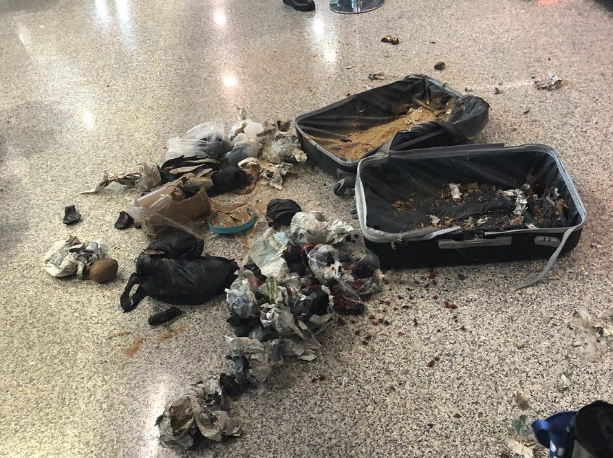 La sorpresa de la Policía de Roma en el Aeropuerto de Fiumicino al hacer explotar una maleta sospechosa