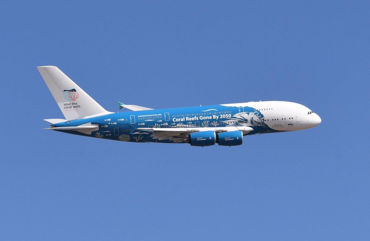 Companhia aérea portuguesa realiza o primeiro voo comercial do mundo sem plásticos descartáveis