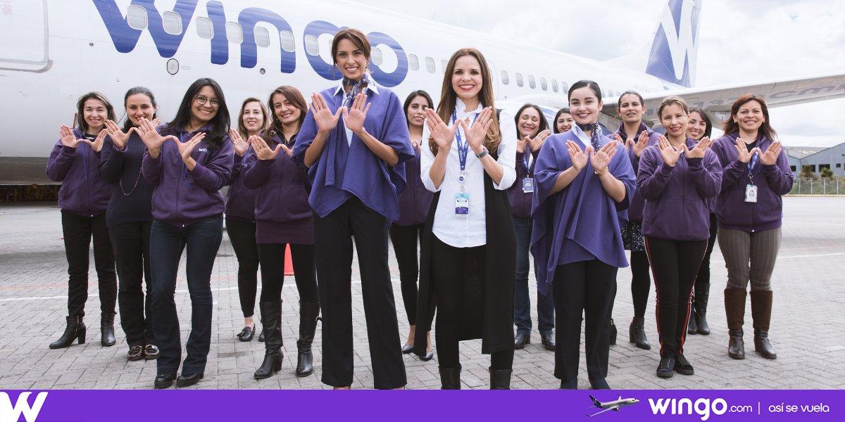Wingo, aerolínea en alza tras dos años de operaciones