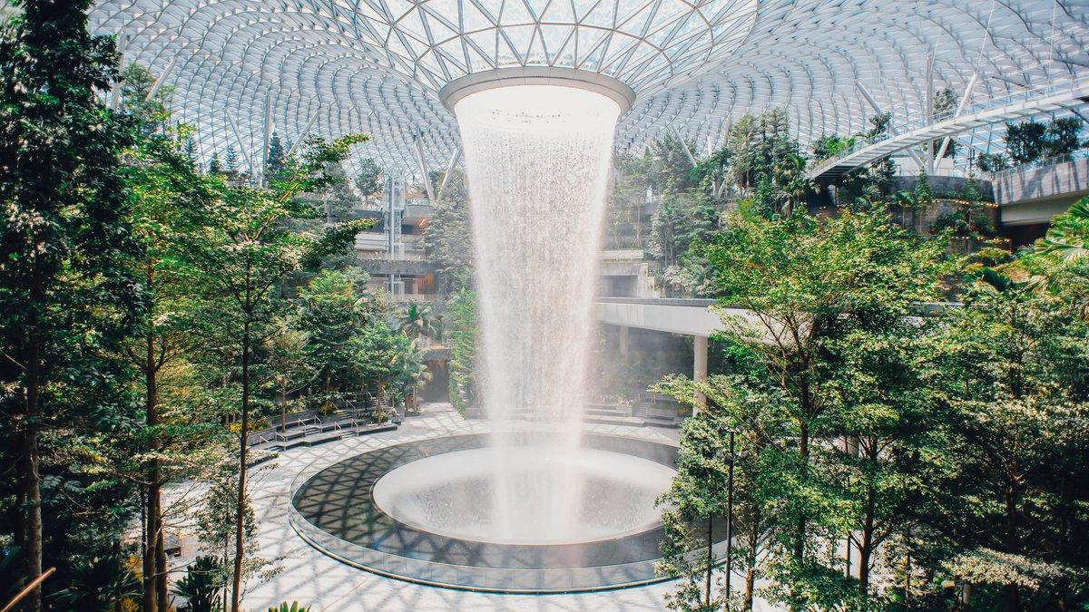 ¿Qué hace una selva artificial dentro de un aeropuerto?