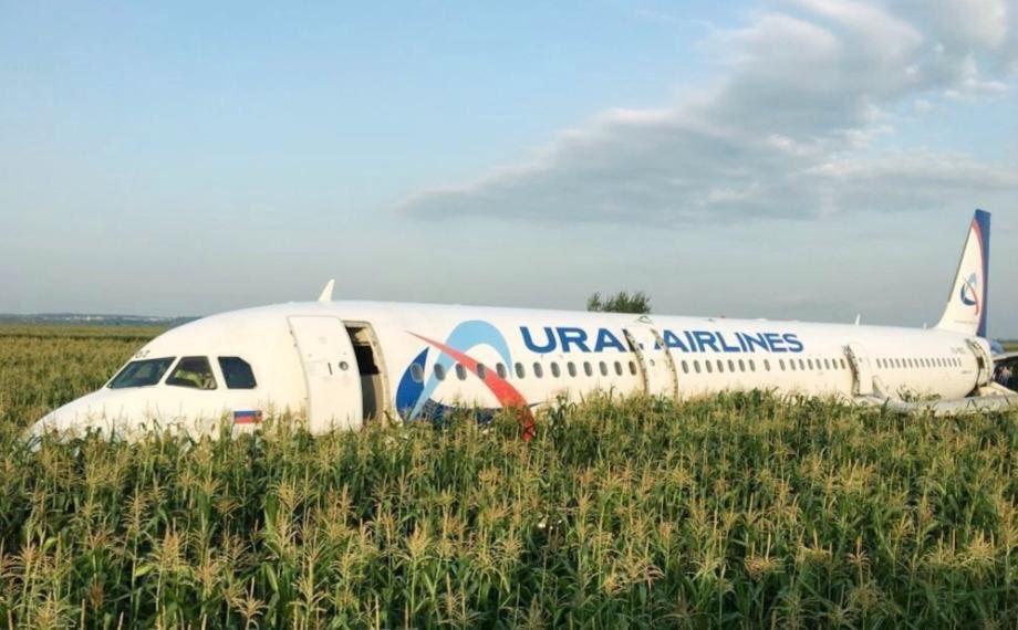 Ural Airlines: cómo la sangre fría hizo que el piloto evitara una tragedia en el accidente de un avión en Rusia