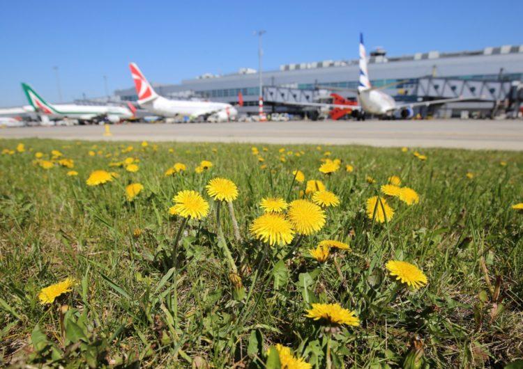 Aeropuerto de Praga utiliza electricidad 100% verde