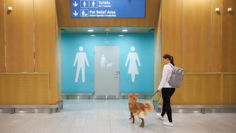 Montan aeropuerto pet-friendly en Finlandia