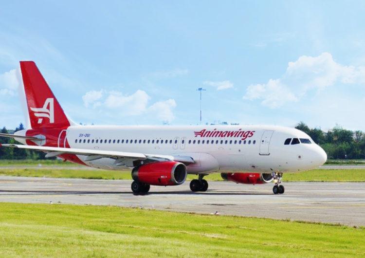 La aerolínea rumana Animawings se une a la comunidad Hitit