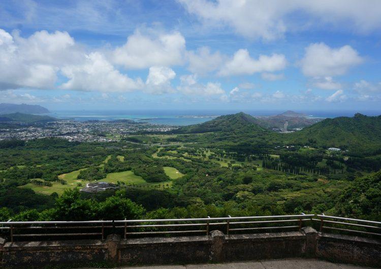 Esperan recuperación del 70% en el tráfico aeroportuario de Hawaii