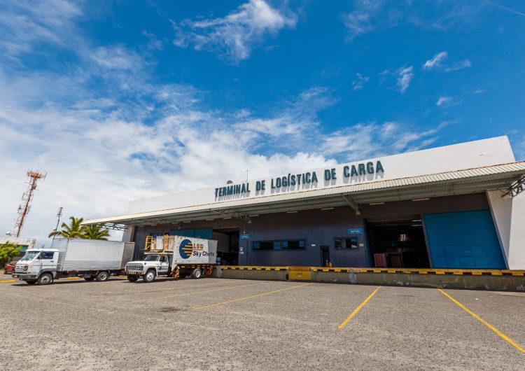 Bahia tem grande produção de frutas, mas há dificuldades para exportar, avaliam especialistas