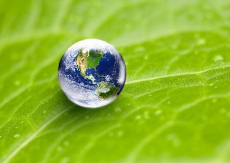 SITA será neutra em carbono até ou antes de 2022