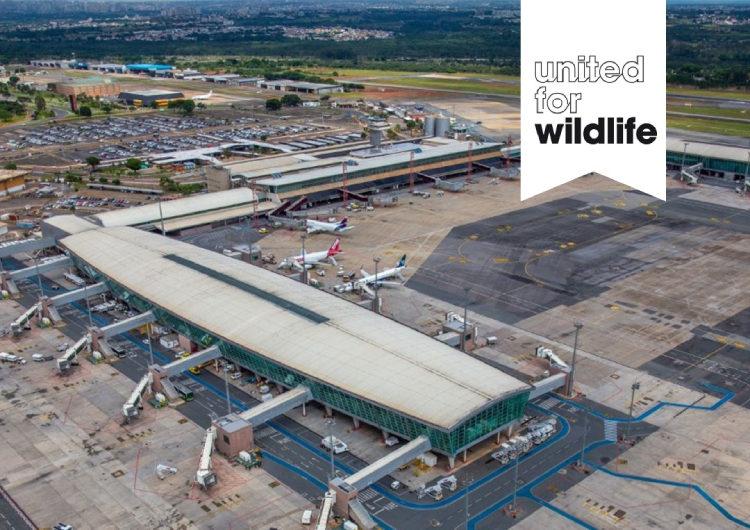 Aeroporto de Brasília é o 1º do país a assinar acordo com organização internacional contra o tráfico de vidas silvestres