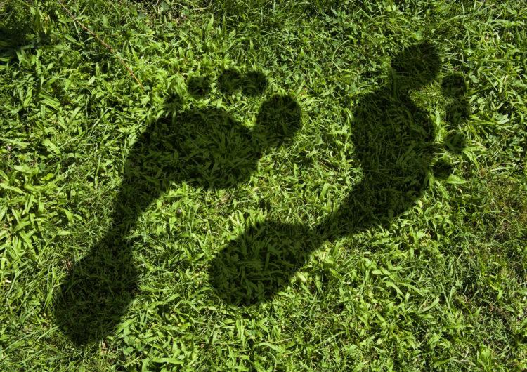 SITA toma pasos decisivos para reducir emisiones de carbono y convertirse en una empresa con certificación de CarbonNeutral®
